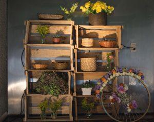 Tienda Online de Cajas de fruta madera