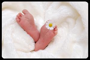 Cajas de bebés baratas