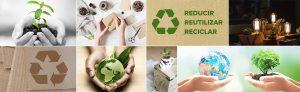 Comprar cajas respetuosas con el medio ambiente