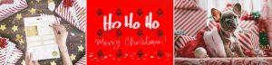 ¡Entra y compra online un envase o regalo infalible para Navidad!