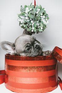 Cajas decoradas circulares… ¿Por qué elegirlas?